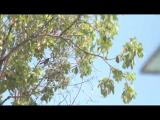 《追梦人》第10集:陈柏翰、叶庭萱《曾任徐佳莹暖场歌手,台湾小情侣内地三线城市教音乐》