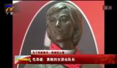 【为了民族复兴·英雄烈士谱】毛泽建:勇敢的女游击队长-190121