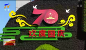 绿植造景鲜花艳 喜迎国庆氛围浓-190920