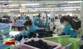 宁夏:强化就业优先政策 全力保障居民就业