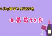 小杞与葡哥系列短视频 《说说葡萄酒》第一集:小葡萄72变!