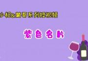 小杞与葡哥系列短视频 《说说葡萄酒》第七集:紫色名片!