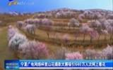 宁夏广电网络杯赏山花摄影大赛吸引640万人次网上看花-4月30日