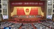 [视频]十三届全国人大一次会议举行第二次全体会议