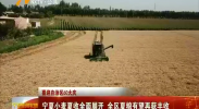 (喜迎自治区60大庆)宁夏小麦夏收全面展开 全区夏粮有望再获丰收-180711
