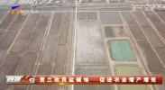 贺兰改良盐碱地 促进农业增产增效-190511