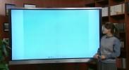 空中课堂(七年级 美术 贾晓蒙 扮靓生活的花卉纹样)VA0