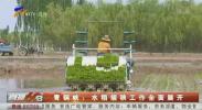 青铜峡:水稻插秧工作全面展开-200522