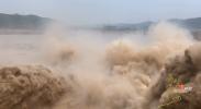 【逐梦黄河Vlog·东线】在黄河小浪底感受气吞山河的壮景