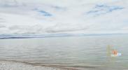 【逐梦黄河Vlog·东】半河清水半河鱼 为有源头清水来