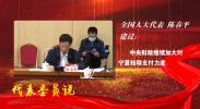 【代表委员说】陈春平  中央财政继续加大对宁夏转移支付力度