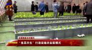 """全面推进乡村振兴   """"鱼菜共生""""打造设施农业新模式-20210506"""