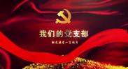 我的党支部——宁夏回族自治区第四人民医院