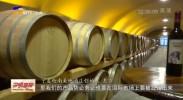 九大产业看发展| 综试区建设激发宁夏葡萄酒产业发展内生动力-20210815