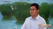 对话先行区|王汉武:聚焦清洁能源 开创中阿能源合作新时代