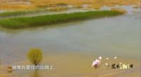 宁夏彭阳第七届山花旅游节