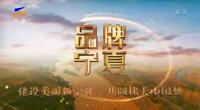品牌寧夏-200304