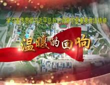 """温暖的回响之四(总书记2020视察宁夏短视频)""""团结就是力量"""""""