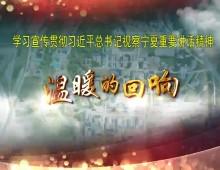 """温暖的回响之一(总书记2020视察宁夏短视频)""""好日子还在后头呢"""""""