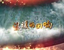 """温暖的回响之二(总书记2020视察宁夏短视频)""""落实项目 切切实实保护好黄河母亲"""""""