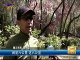 银川市再添一条自行车慢行道-2017年4月28日