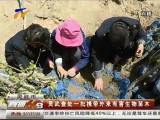 灵武查处一批携带外有害生物苗木-2017年4月24日