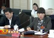 【两会声音】 自治区人大代表 刘虹:把高铁站建成银川都市圈交通综合服务枢纽