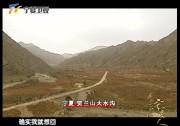 51、坐上火车去宁夏,从东北来到贺兰山下