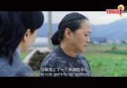 咱们村的文化礼堂(浙江)