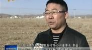 同心:严守耕地红线 确保数量不减质量不降-2017年4月17日