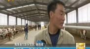 """华润定点帮扶海原 让农户搭上""""脱贫快车""""-2017年5月6日"""