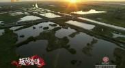 【砥砺奋进的五年】宁夏:坚持生态优先 挺起绿色脊梁-2017年6月12日