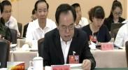 石泰峰参加区直机关代表团审议时强调 要带头学习领会和贯彻落实党代会精神-2017年6月7日
