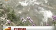 宁夏新闻联播-2017年6月15日