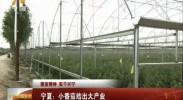 宁夏新闻联播(卫视)-2017年8月6日