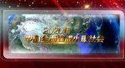 行进陕甘宁宣传片
