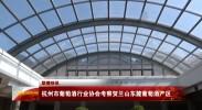 杭州市葡萄酒行业协会考察贺兰山东麓葡萄酒产区