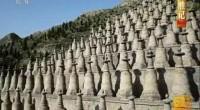 《中国影像方志·青铜峡》