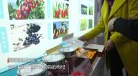 宁夏农业新成果新技术亮相全国新农民新技术创业创新博览会