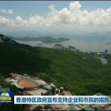 [视频]香港特区政府宣布支持企业和市民的措施