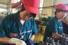 宁夏FSK:产品60%出口国外