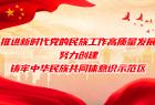 海报|宁夏:推进新时代党的民族工作高质量发展 努力创建铸牢中华民族共同体意识示范区