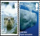 英十种濒危动物登上新版邮票 呼吁保护自然财富