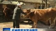 宁夏:产业扶贫让穷乡僻壤成为投资热土