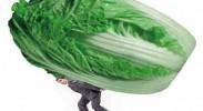 蔬菜价格暴涨暴跌周而复始,谁有责?