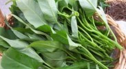 养生保健:保护肝脏常吃12种蔬菜
