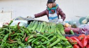 银川:控价蔬菜 平抑物价