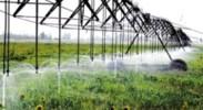 平罗县夯实现代农业发展基础 促进农民增收致富