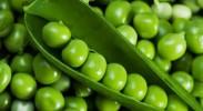 """""""一白遮三丑""""七种公认美白蔬菜"""