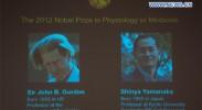 英日科学家因在诱导多功能干细胞贡献获诺奖